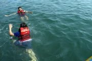 Best-Snorkeling-activities-in-Goa-Island-Trip